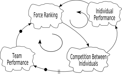 Force Ranking Dyanmics